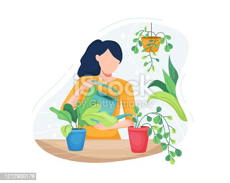 Vector illustration Young woman taking care plants. Beautiful woman watering houseplants, Women caring for indoor plants. Female gardener, Vector illustration in a flat style