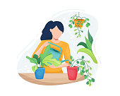 istock Young woman taking care plants 1212900176