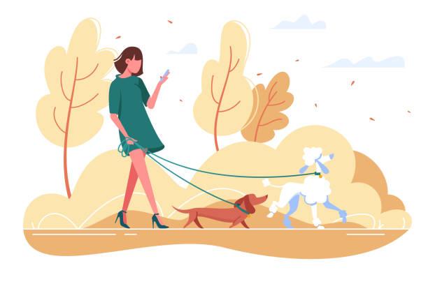ilustraciones, imágenes clip art, dibujos animados e iconos de stock de joven camina con el perro por el bosque. - moda de otoño