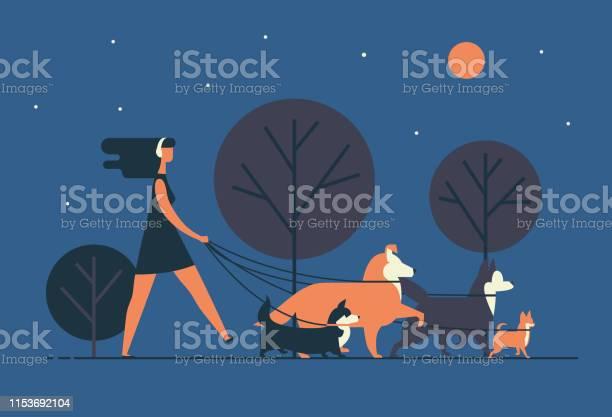 Young woman wearing dress and headphones walks dogs on leash along vector id1153692104?b=1&k=6&m=1153692104&s=612x612&h=qp9gwqoesbq0ee2iydo7yvr1c03rakeezir97bizkom=