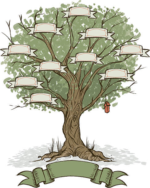 eigenen family tree - stammbäume stock-grafiken, -clipart, -cartoons und -symbole