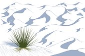 Yucca plant in a dessert. White Sands dessert vector illustration. White dunes