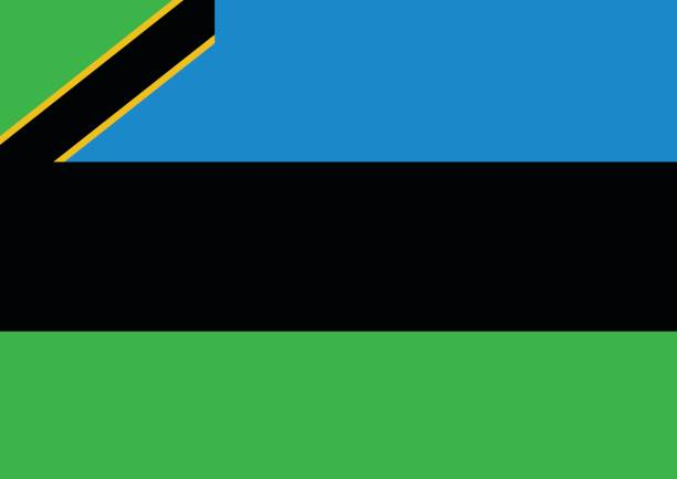 Zanzibar national flag. vector illustration design. vector art illustration