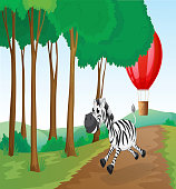 zebra and a hot air balloon at the forest