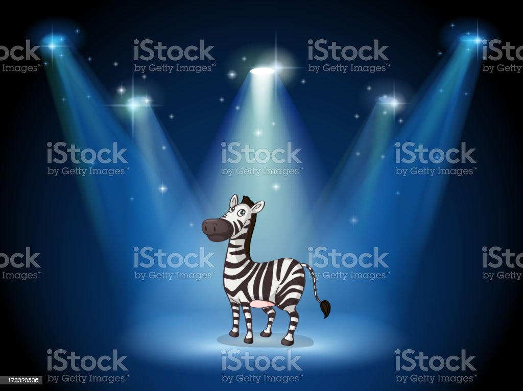 zebra at the stage with spotlights royalty-free stock vector art