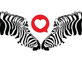 Zebra couple with heart.