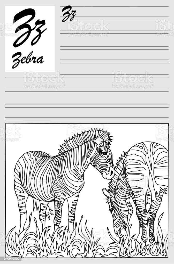 Zebra Ingilizce Alfabe Anahat Yazma Ve Boya Boyama Kartları