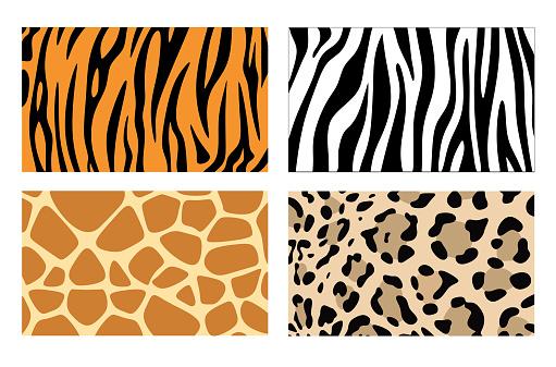 Zebra, giraffe and leopard patterns. Vector tiger stripes and jaguar spots fur, giraffe and zebra seamless skin prints