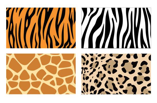 Zebra, giraffe and leopard patterns. Vector tiger stripes and jaguar spots fur, giraffe and zebra seamless skin prints Zebra, giraffe and leopard patterns. Vector tiger stripes and jaguar spots fur, giraffe and zebra seamless skin prints undressing stock illustrations
