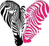 Zebra head, Black and pink colors  in heart shape.