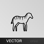 zebra icon. Element of safari for mobile concept and web apps illustration. Thin line icon for website design and development, app development on white background on gray background
