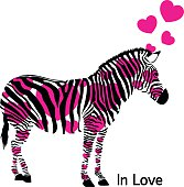 Zebra in love with hearts.