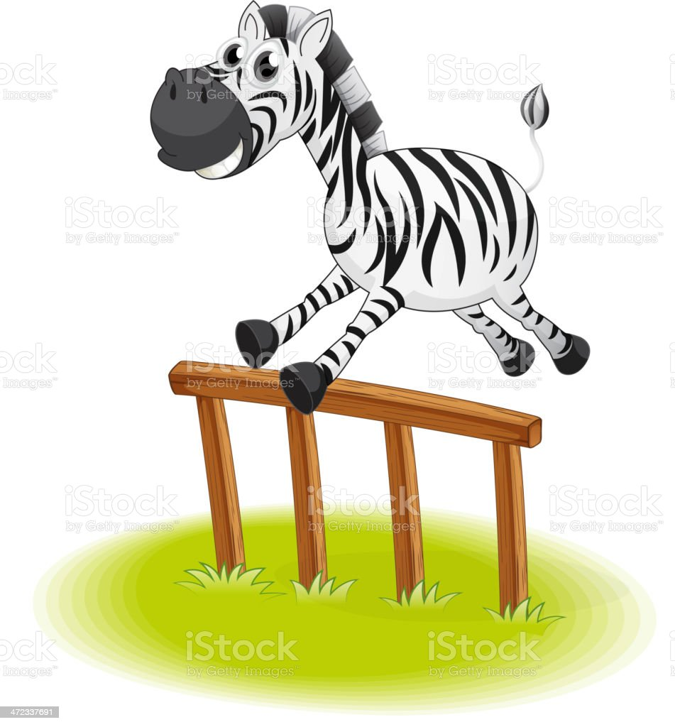 Zebra jumping royalty-free stock vector art