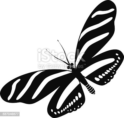 A vector illustration of zebra longwing butterfly in black and white. An EPS file and a large jpg are included in this download.