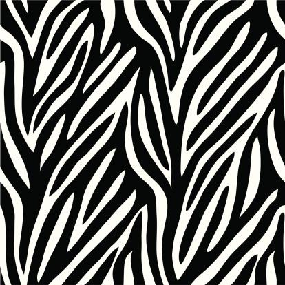Zebra Padrão - Arte vetorial de stock e mais imagens de Curva - Forma