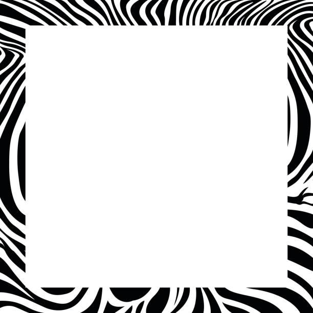 zebra-druck grenze, rahmendesign. - zebras stock-grafiken, -clipart, -cartoons und -symbole