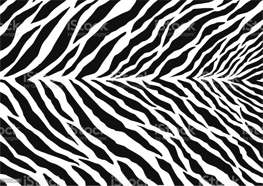 Marca de Zebra - Royalty-free Animal arte vetorial