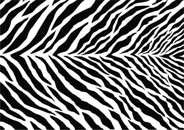 ilustrações de stock, clip art, desenhos animados e ícones de marca de zebra - padrões zebra