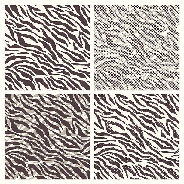 ilustrações de stock, clip art, desenhos animados e ícones de sem costura padrão de pele de zebra - padrões zebra
