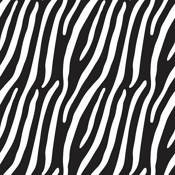 ilustrações de stock, clip art, desenhos animados e ícones de fundo de zebra pele (sem costura) - padrões zebra