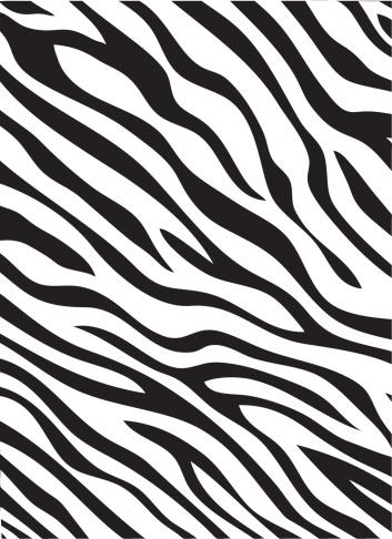 Zebra Padrão - Arte vetorial de stock e mais imagens de Animal
