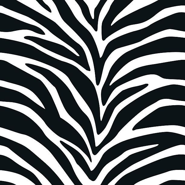 ilustrações de stock, clip art, desenhos animados e ícones de zebra padrão repetido 2 - padrões zebra
