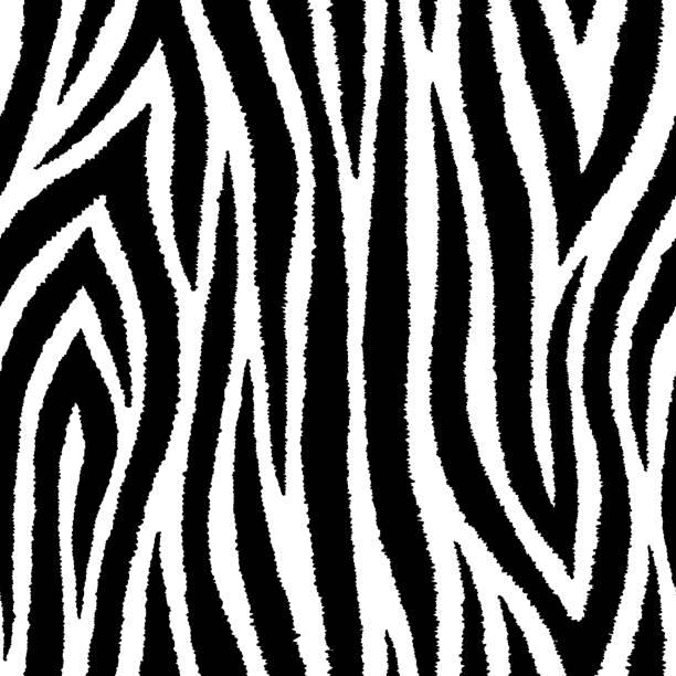 ilustrações de stock, clip art, desenhos animados e ícones de zebra stripes seamless pattern. exotic wild animalistic fur texture. vector wallpaper for textiles, wrapping paper, banners, etc. - padrões zebra