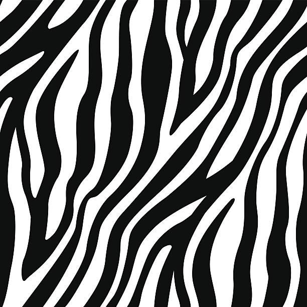 mit zebra-streifen nahtlose muster - zebras stock-grafiken, -clipart, -cartoons und -symbole
