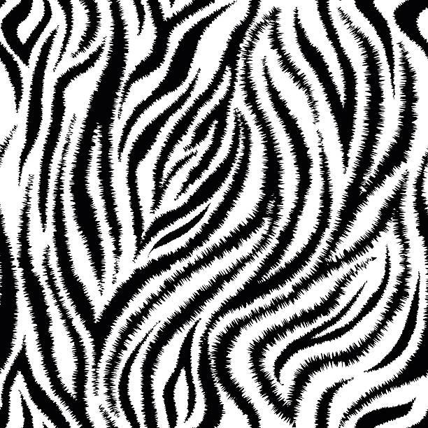 mit zebra-streifen nahtlose muster - pelzmäntel stock-grafiken, -clipart, -cartoons und -symbole