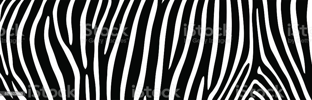 zebra stripes vector art illustration