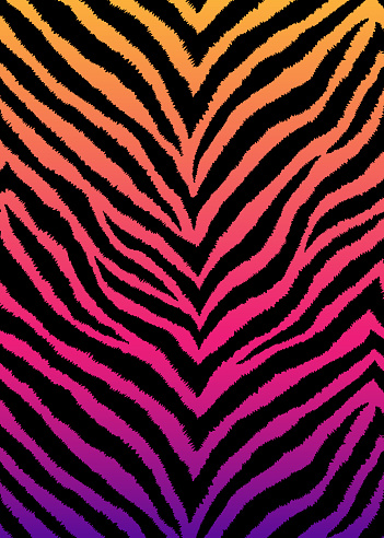 Zebra, tiger print, animal skin with zigzag lines, stripes. Abstract background. Detailed hand drawn vector illustration. Exotic gradient poster, banner.