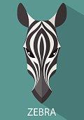 Zebra vector flat design