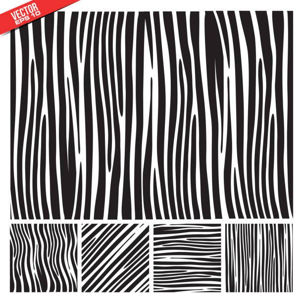zebra vektor-muster - pelzmäntel stock-grafiken, -clipart, -cartoons und -symbole