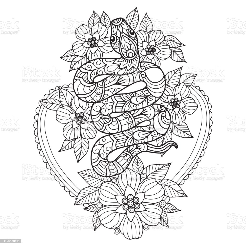 - Zen Doodle Snake And Flowers Tangles Adult Coloring Books Illustration  Zentangle Style Stock Illustration - Download Image Now - IStock