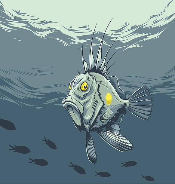jupiter faber - petersfisch stock-grafiken, -clipart, -cartoons und -symbole