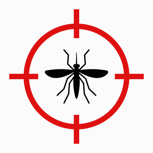 illustrazioni stock, clip art, cartoni animati e icone di tendenza di virus zika avviso, destinazione zanzara - zanzare
