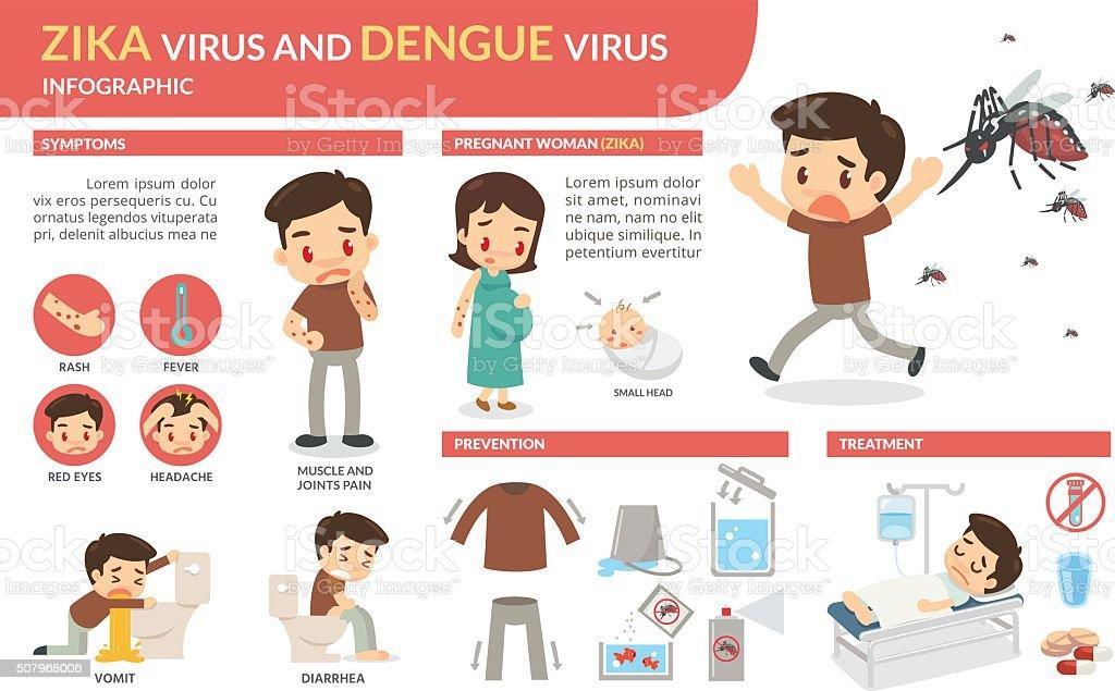 Zika virus and dengue virus infographic vector art illustration