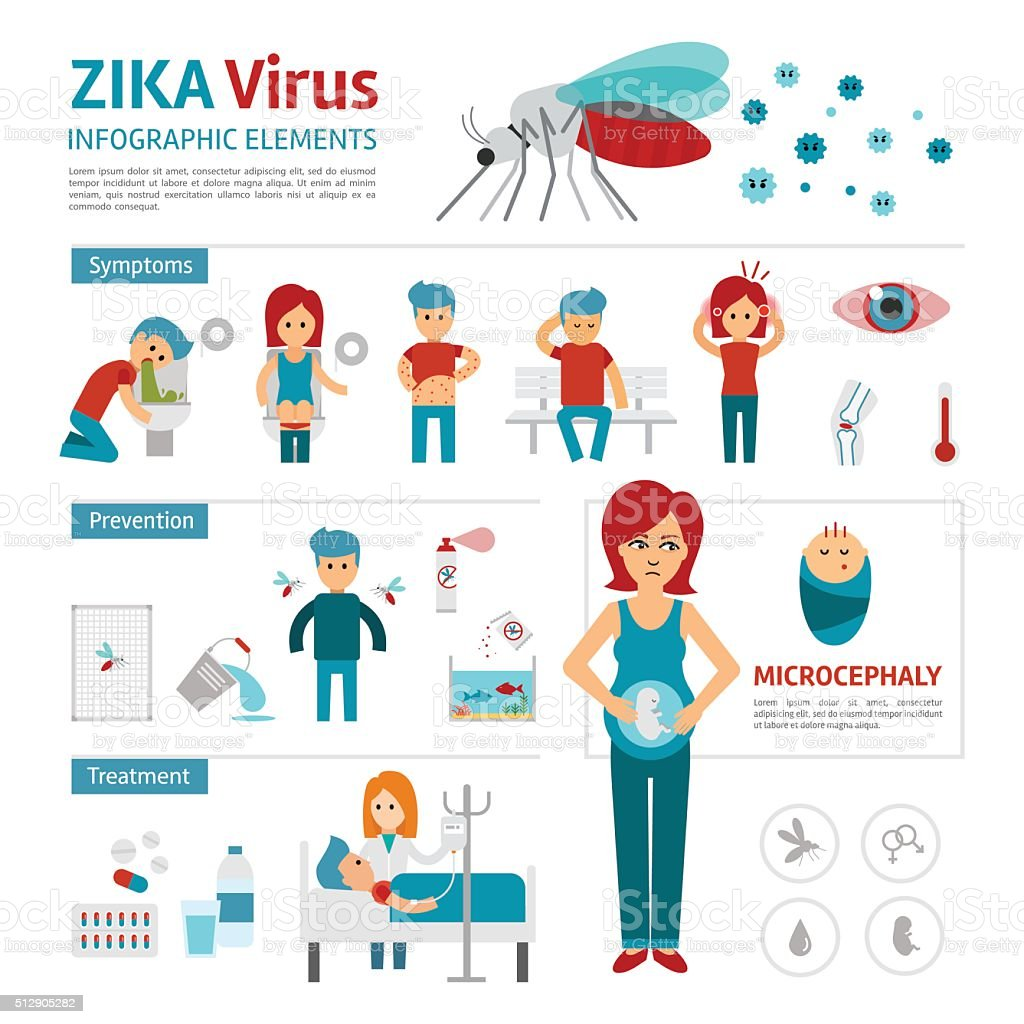 Zika virus infographic elements. vector art illustration
