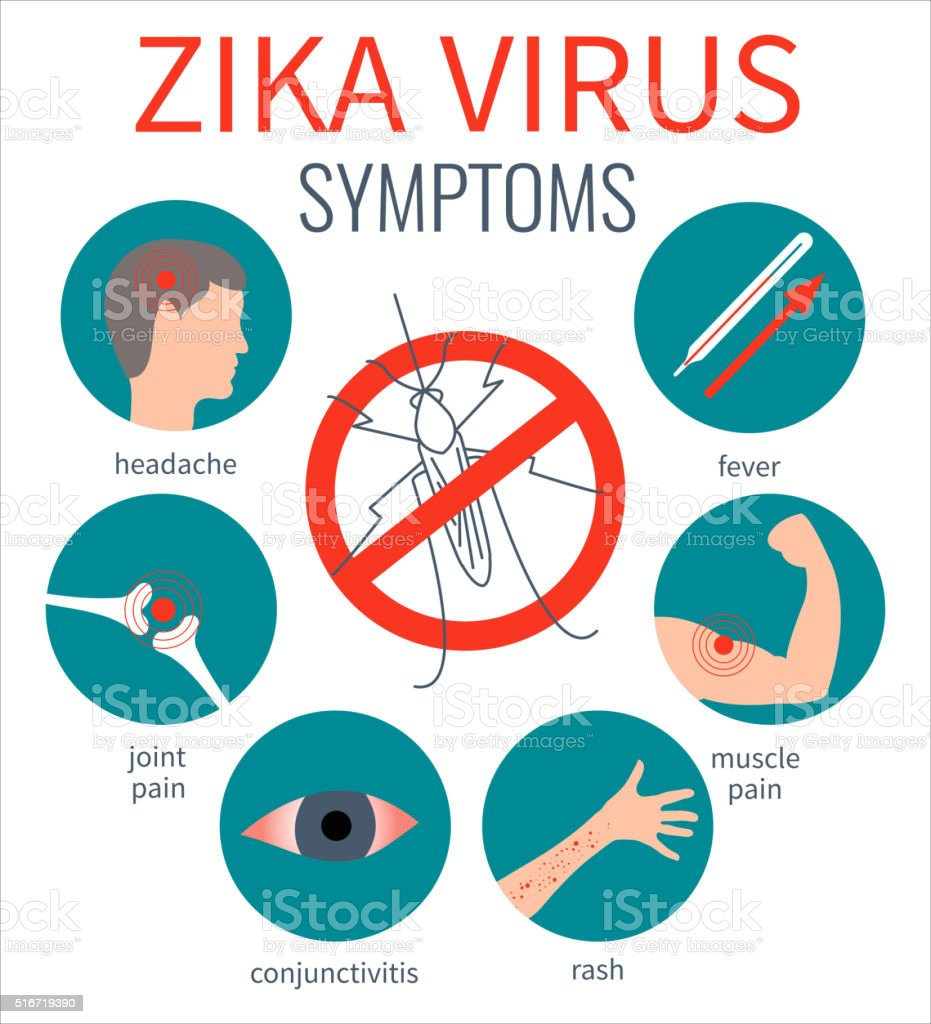 Zika virus symptom icons vector art illustration