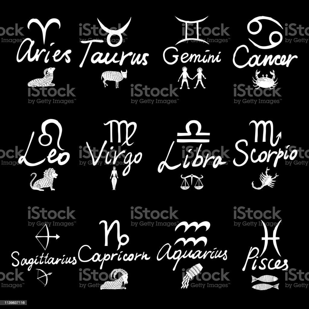 Zodiac 12 Signs Capricorn Aquarius Pisces Aries Taurus