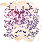 Zodiac Cancer. Linear drawing itolated on grunge background