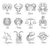 Zodiac graphic signs vector
