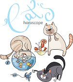 Zodiac signs in cats: the element of water