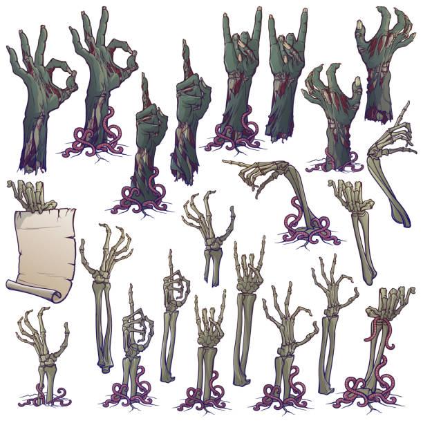bildbanksillustrationer, clip art samt tecknat material och ikoner med zombie kroppsspråk. uppsättning av verklighetstrogna ruttnande zombie händer och skelett händer ökar från under marken och slits isär. linjär ritning isolerad på vit bakgrund. - zombie
