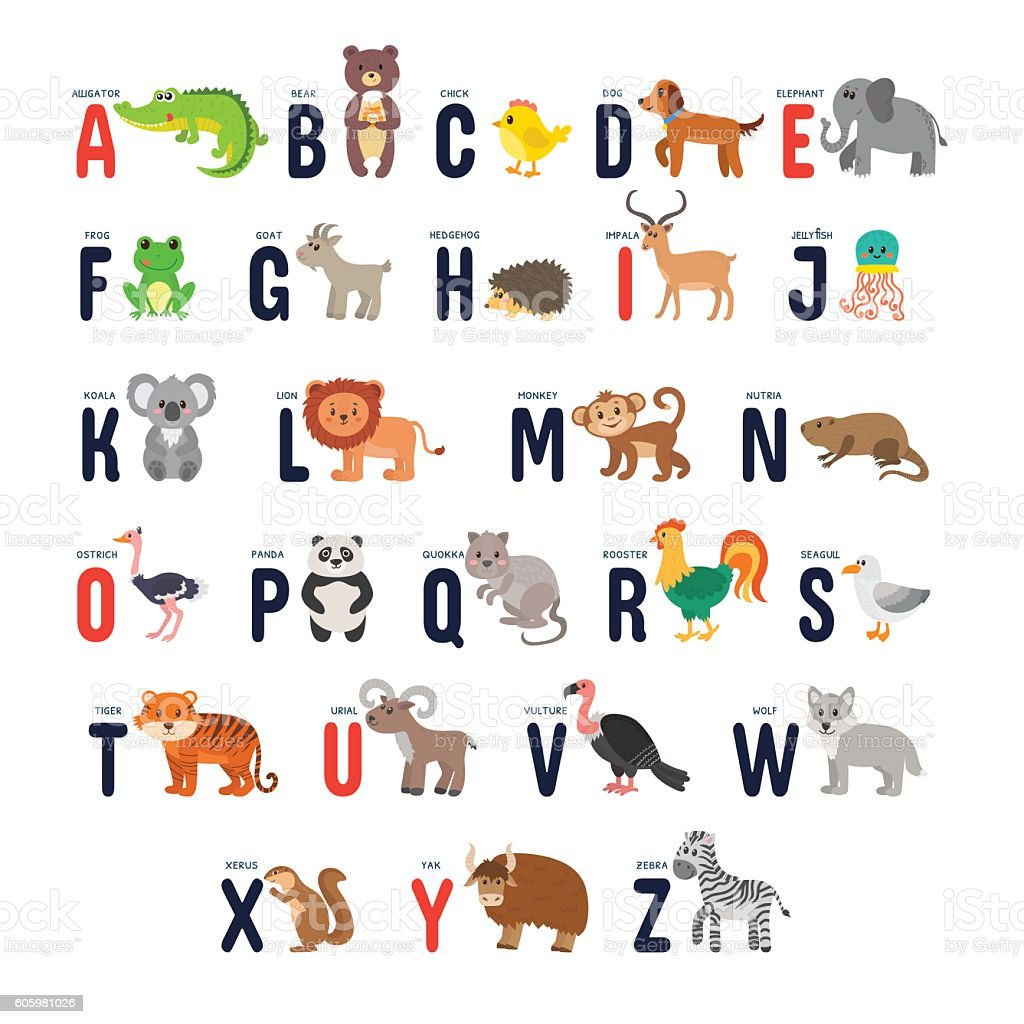 Zoo alphabet with cute cartoon animals vector art illustration