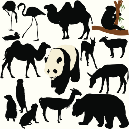 Zoo Animal Silhouette Set