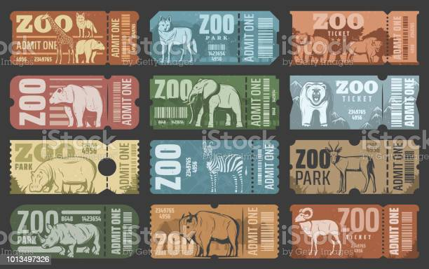 Zoo park tickets with african and forest animals vector id1013497326?b=1&k=6&m=1013497326&s=612x612&h=dztng8uwjbcyufvm i92izicymgyak 0fvls5c3jhju=