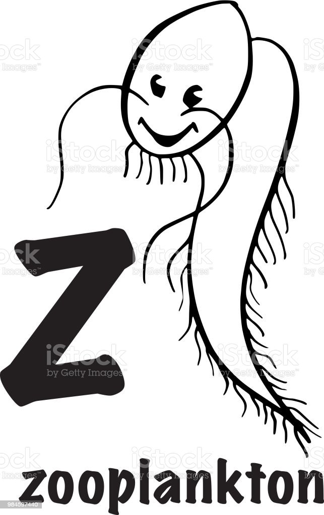 Zooplankton Coloring Page Royalty Free Stock Vector Art Amp More Images