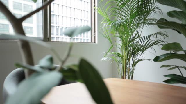 観葉植物とテーブルのある部屋