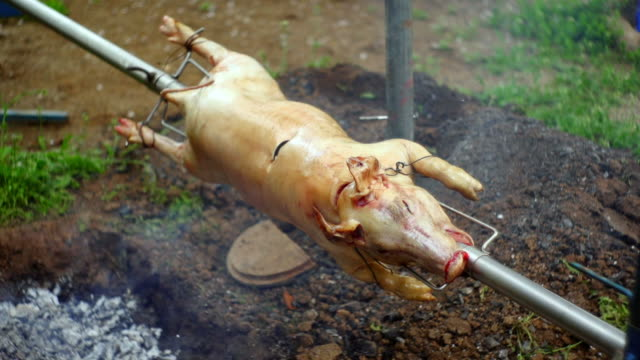 PIG ON A SPIT video